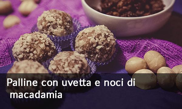 palline-con-uvetta-e-noci-di-macadamia