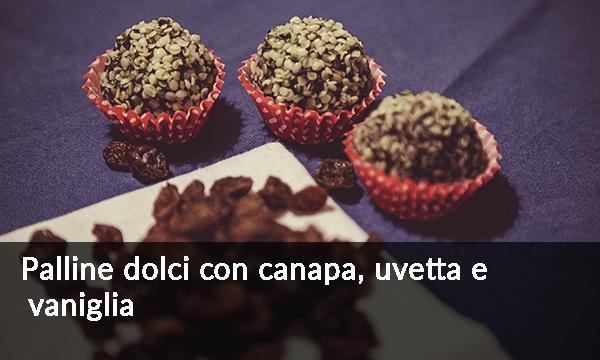palline-dolci-con-canapa-uvetta-e-vaniglia