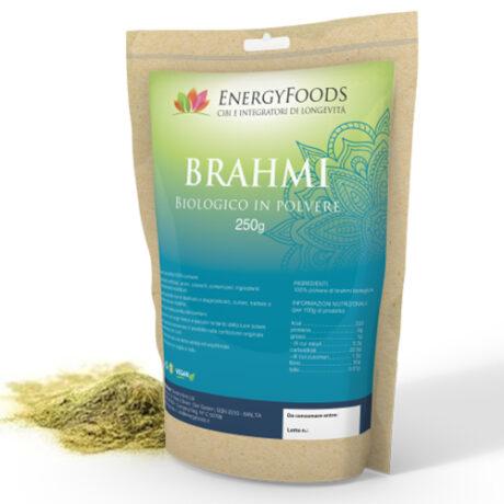 Brahmi_2